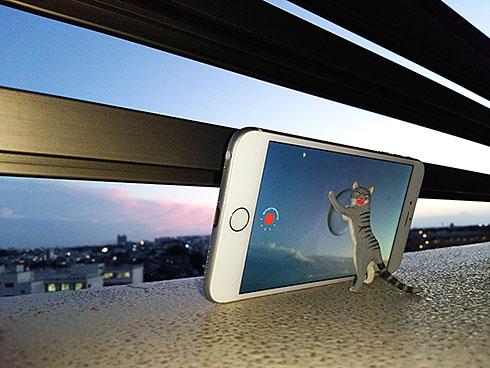猫でiPhoneを支える