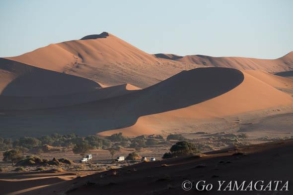 ナミブ砂漠の画像 p1_10