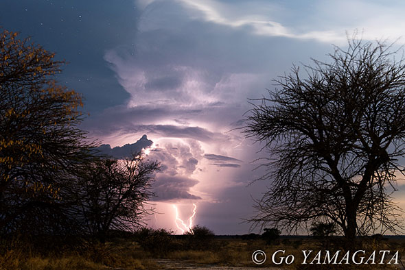 自然写真撮影紀