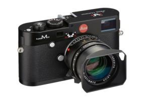 mwdp43-3.jpg