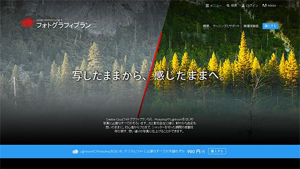tm_lightroo_01.jpg