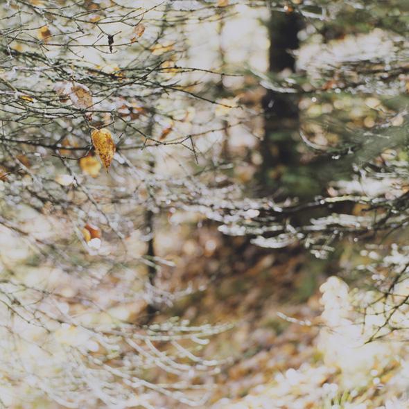 山田博行 写真展「CABIN」