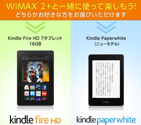 wmfig486.jpg