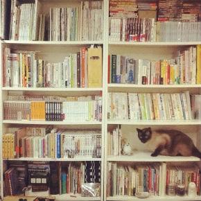 レイラさんの本棚