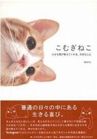 余命宣告にも負けずに愛らしい姿ふりまく猫に世界中が感動