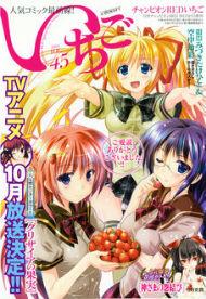 『チャンピオンREDいちご』Vol.45