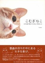 『こむぎねこ』著者・tomoさんにインタビュー