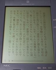 tnfigdbp023.jpg