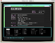 tnfigichi002.jpg