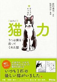 人間が猫から学ぶべき3つの大切なこと