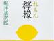 『檸檬』にも登場した丸善 京都本店、10年ぶりに復活