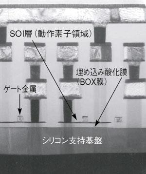 写真4 FD-SOI構造デバイスの断面