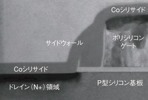 写真5 サリサイド構造のトランジスタの断面