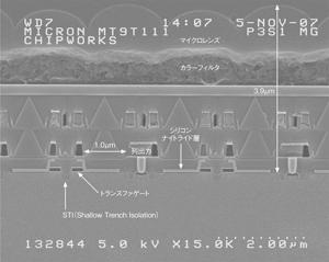 写真1 画素行列アレイの断面観察像