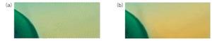 図12 動き検出を誤った場合の画像の乱れ