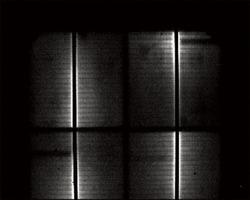 写真1ウェーハ画像の例
