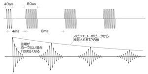図1 スピンエコー法によるT<sub>2</sub>の求め方