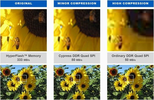 tt160218Cypress007.jpg