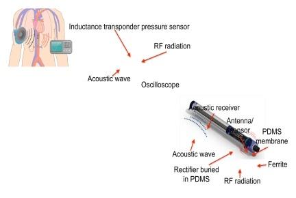 音響波を環境発電のエネルギー源として利用する医療センサー