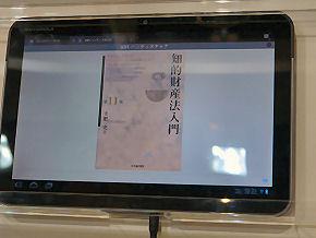 sm_201205ESEC_aplix3-2.jpg
