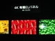 4K対応ディスプレイが競演——CEATEC 2013