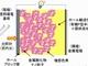 発電効率はアモルファスシリコンの2倍以上、リコーが完全固体型色素増感太陽電池を開発
