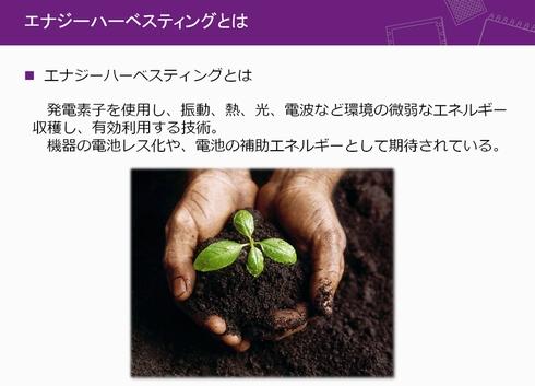 tt141112SP_anlog_006.jpg
