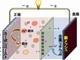 レアメタル不要の共融系二次電池を開発