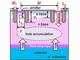 東工大、微細化でIGBTのオン抵抗を半減