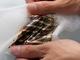 洗濯可能な薄型有機太陽電池、理研らが開発