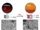 可視光域で高効率、世界初の窒化タンタル光触媒を実現