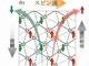 有機化合物でスピン流を生み出す新機構を発見