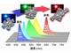 九州大、高効率で高色純度の有機発光材料を開発