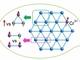 名古屋大、磁場中で体積変化する反強磁性体を発見