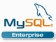 Sun、「MySQL Enterprise Fall 2008 Release」を発表