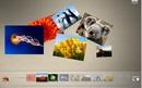 yu_collage.jpg