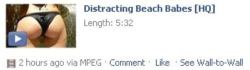 beachbabes