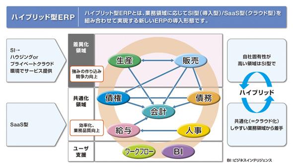 ハイブリッドERPの全体図
