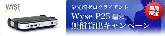 wyse_cp.jpg