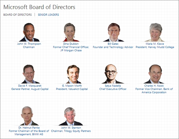 ms board