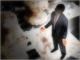 CSIRTでは不十分、企業のセキュリティ人材の育成課題とは?