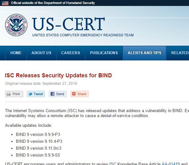 「BIND 9」の更新版公開、DoSの脆弱性に対処