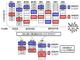 混雑原因を数分で発見 混雑予測シミュレーション分析の新技術——富士通研究所と早稲田大学が共同開発