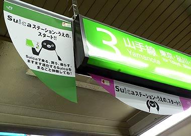 ay_ueno02.jpg
