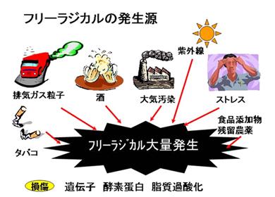yonei01.jpg