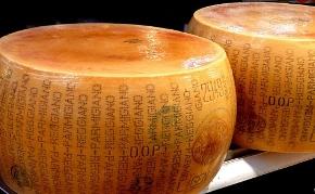 cheese290.jpg