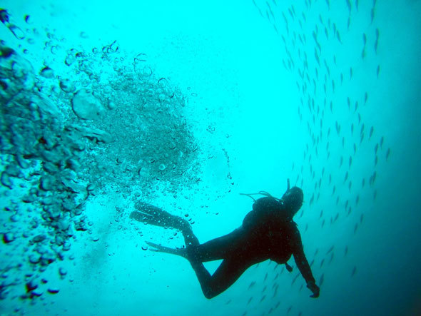 防水カメラなら本格的な水中撮影もできる