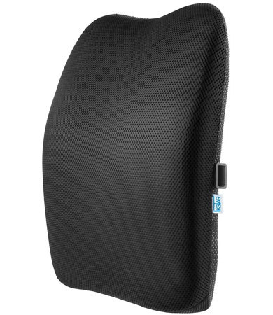 「腰楽クッション 低反発 ランバーサポート」