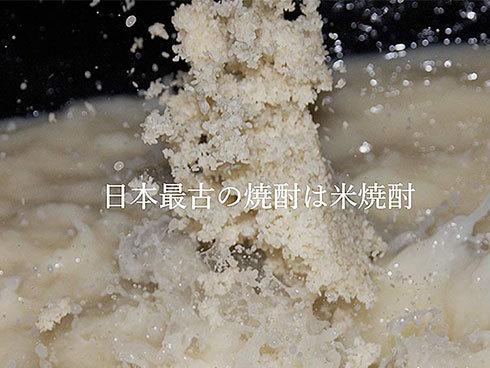 焼酎は原料となる穀物を発酵させ蒸留したお酒