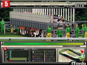 hn_race4.jpg